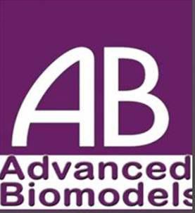 Omid Institute for Advanced Biomodels_Partonama